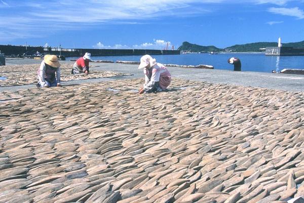枕崎水産物加工業協同組合HP 英語サイトが登場:写真1
