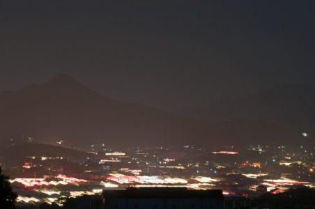 枕崎の夜を優しく照らす「電照菊ハウス群」