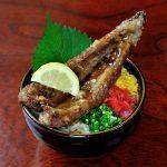 昆鰹(コンカツ)枕崎鰹大トロ丼